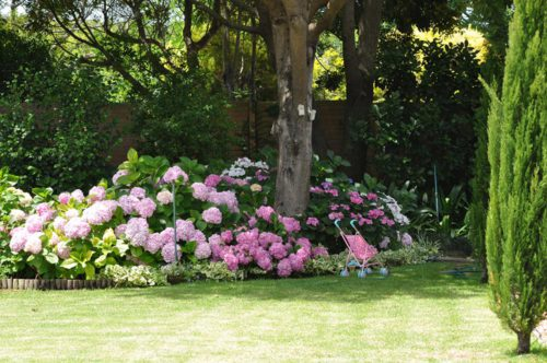 kleurvolle-tuin